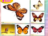 c_200_150_16777215_00_images_Bigprint_41.jpg