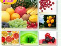 c_200_150_16777215_00_images_Bigprint_61.jpg