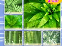 c_200_150_16777215_00_images_Bigprint_64.jpg