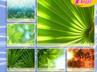 c_200_150_16777215_00_images_Bigprint_66.jpg