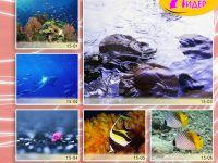 c_200_150_16777215_00_images_Bigprint_68.jpg