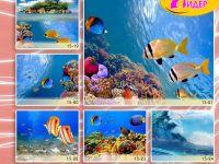 c_200_150_16777215_00_images_Bigprint_70.jpg