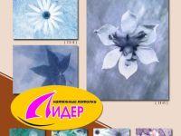 c_200_150_16777215_00_images_fotopechat_32.jpg
