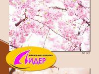 c_200_150_16777215_00_images_fotopechat_66.jpg