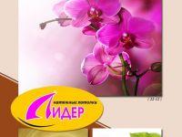 c_200_150_16777215_00_images_fotopechat_71.jpg