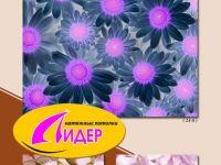 c_200_150_16777215_00_images_fotopechat_78.jpg