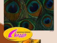 c_200_150_16777215_00_images_fotopechat_95.jpg