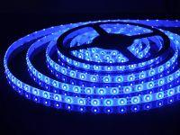 Светодиодная лента синяя 300руб.