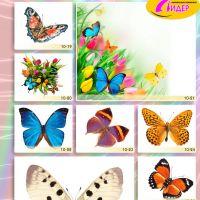 c_200_200_16777215_00_images_Bigprint_40.jpg
