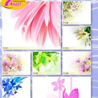 c_200_200_16777215_00_images_Bigprint_43.jpg