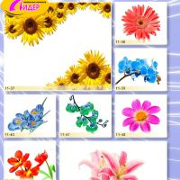 c_200_200_16777215_00_images_Bigprint_47.jpg