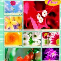 c_200_200_16777215_00_images_Bigprint_52.jpg
