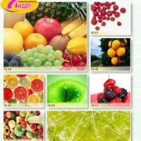 c_200_200_16777215_00_images_Bigprint_61.jpg