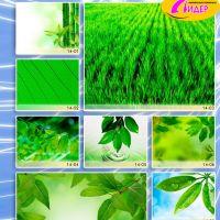 c_200_200_16777215_00_images_Bigprint_62.jpg