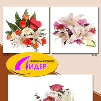 c_200_200_16777215_00_images_fotopechat_92.jpg