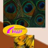 c_200_200_16777215_00_images_fotopechat_95.jpg